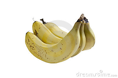 Trio of Bananas, Isolated on White