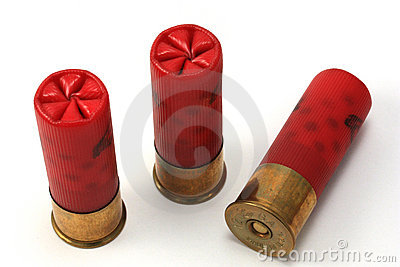 Trio of Shotgun Shells