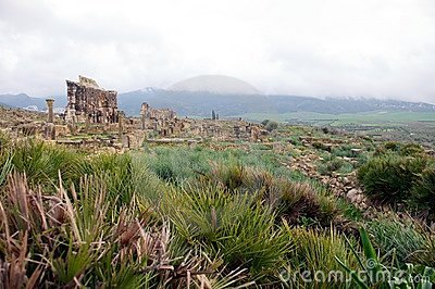 Triumphal Arch and general view of Volubilis