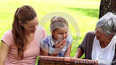 Trois générations des femmes ayant un pique-nique banque de vidéos