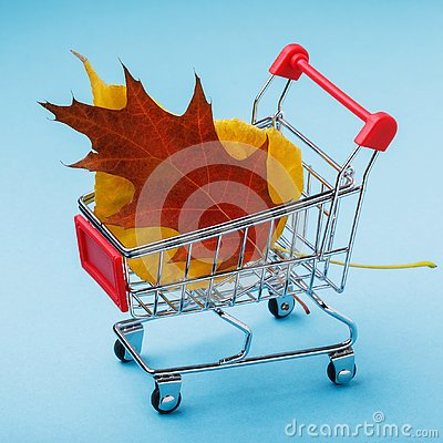 Free Trolley With Leaves On Blue Background Royalty Free Stock Image - 130015746