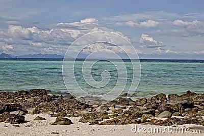 Tropic beach bamboo island