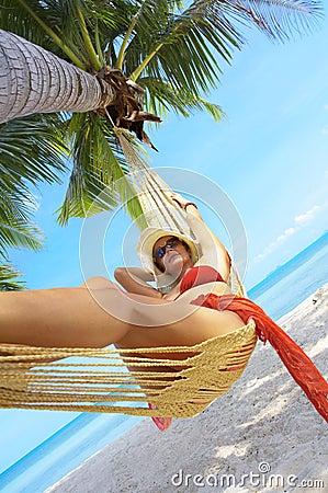 Free Tropic Diagonal Stock Image - 5024551