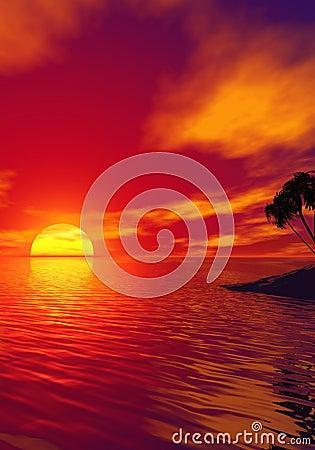 Free Tropic Sunset Stock Photography - 3316652