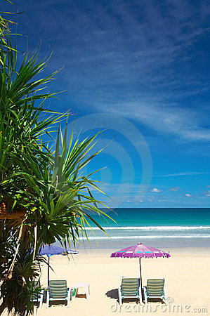 Free Tropic View Stock Images - 2576944
