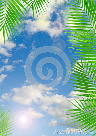 Tropical background with lens flare effect