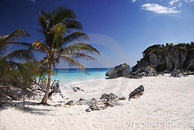 Turtle beach Tulum