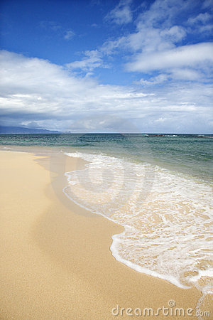 Free Tropical Beach Royalty Free Stock Photos - 2045738