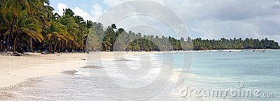 Tropical Beach Stock Image - Image: 24660721