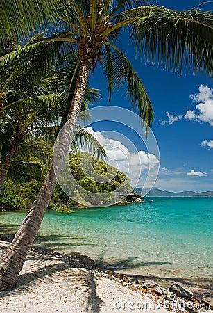 Free Tropical Beach Stock Image - 2573951