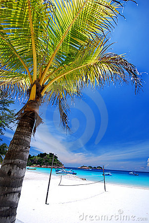 Free Tropical Beach Stock Photography - 3056972