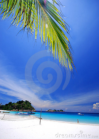 Free Tropical Beach Stock Images - 3056984