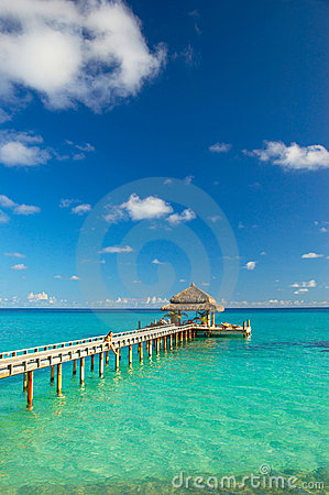 Free Tropical Beach Royalty Free Stock Photography - 4944277