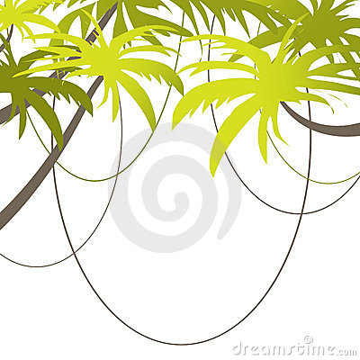 Tropical Beach Banner.  illustration