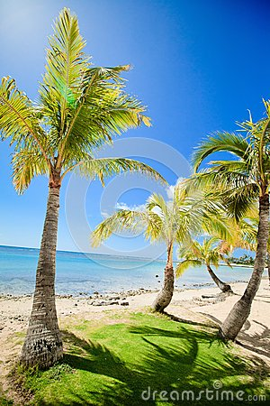 Tropical beach and bay