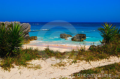 Tropical beach (Bermuda South shore)
