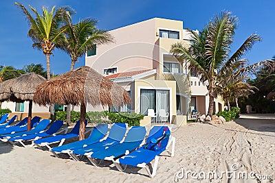 Tropical beach with blue deckchairs