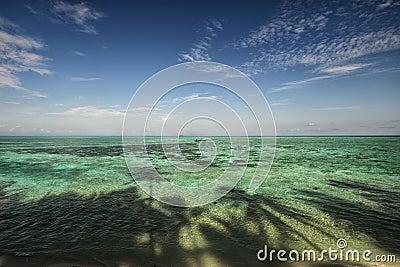 Tropical beach and blue sky