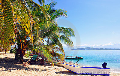 Tropical beach with boat and palm trees