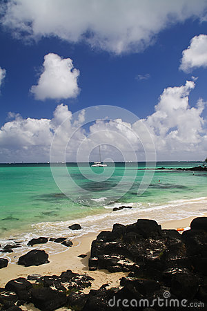 Tropical beach with boats