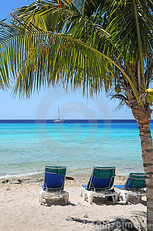 Tropical Beach With Clear Waters