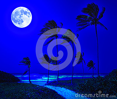 Tropical beach in Cuba at night