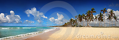 Tropical beach in Dominican Republic, panoramic