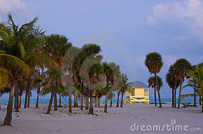 Tropical Beach at Dusk