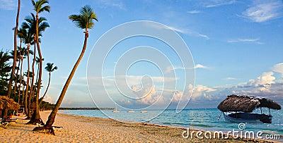 TROPICAL BEACH ECO