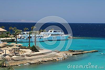 Tropical beach in Egypt