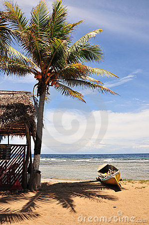Tropical beach hut and canoe