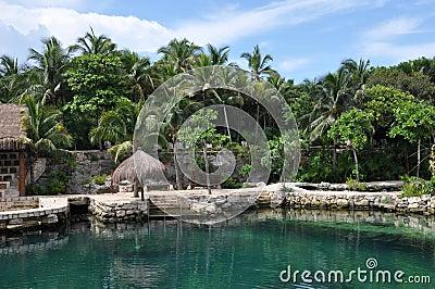 Tropical Beach Huts