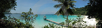 Tropical Beach Jetty