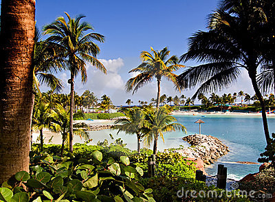 Tropical Beach Lagoon