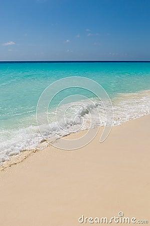 Free Tropical Beach, Los Roques Islands, Venezuela Royalty Free Stock Photos - 12185628