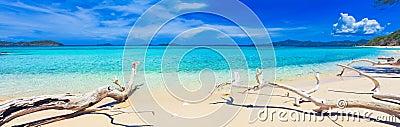 Tropical beach Malcapuya
