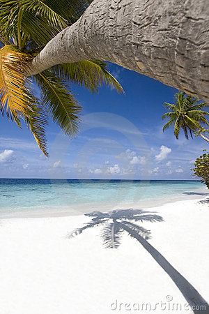 Tropical beach, Maldives