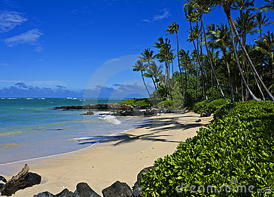Tropical Beach, Maui