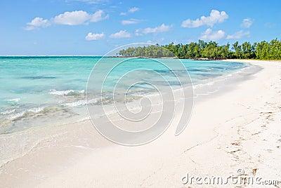 Tropical beach in Mauritius