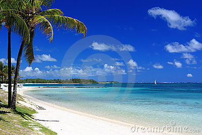 Tropical beach in mauritius island