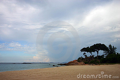 Tropical beach nature landscape view