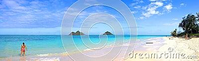 Tropical beach at Oahu