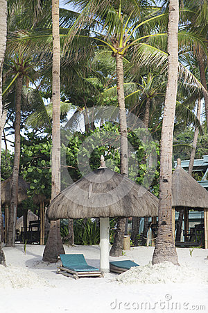 Tropical beach with palm trees and chairs