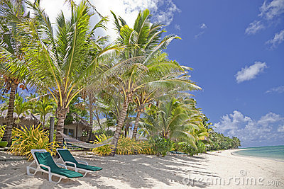 Tropical Beach with Palm Trees and Lounge Chairs