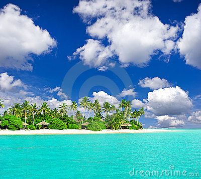 Tropical beach with palm trees over blue sky