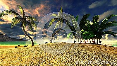 Tropical beach paradise