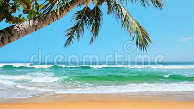 Tropical beach. Peaceful tropical beach stock footage stock video