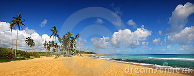 Tropical beach in Punta Cana, panoramic