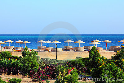 Tropical beach and Red Sea