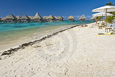 Tropical beach resort on moorea in south seas